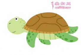 乌龟和壁虎的故事