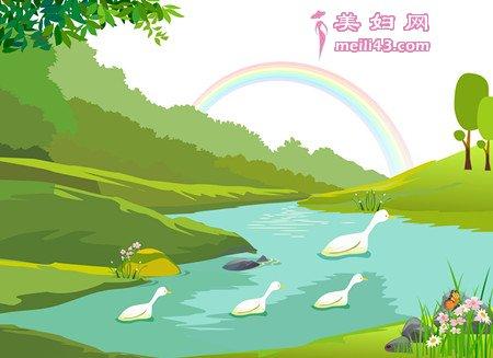 大白鹅和小白鸭的故事