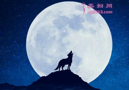 月亮和星星的故事