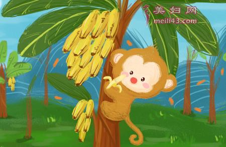 小猴子学本领的故事