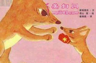 我亲爱的狐狸大叔的故事