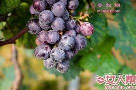 减肥期间可以吃葡萄吗 减肥吃葡萄会长胖吗